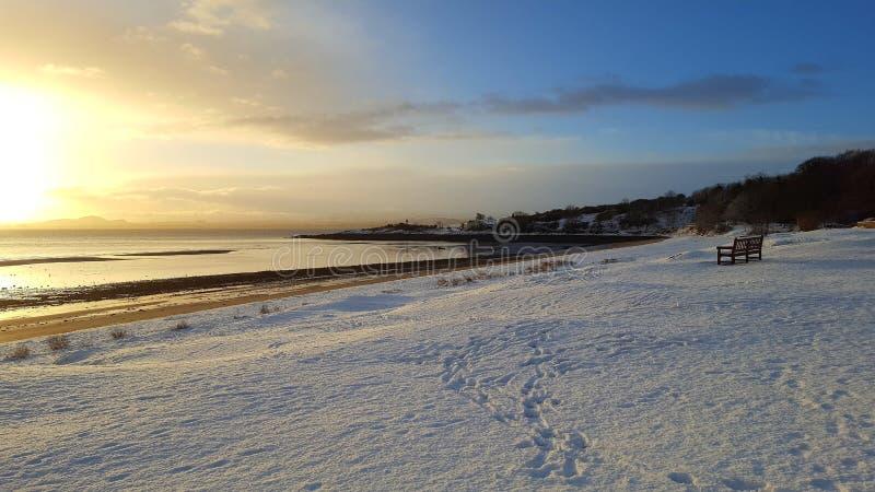 在海滩的雪 免版税库存图片