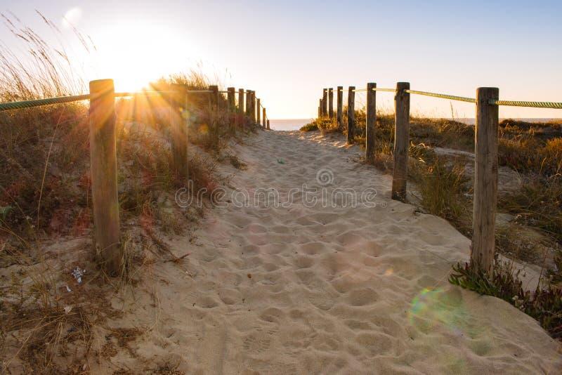 在海滩的风景日落与木篱芭 靠岸的入口在平衡阳光 木专栏和道路在沙子 免版税图库摄影