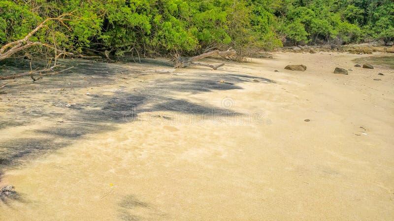 在海滩的黑沙子 Huatulco国立公园,瓦哈卡 旅行在墨西哥 免版税图库摄影