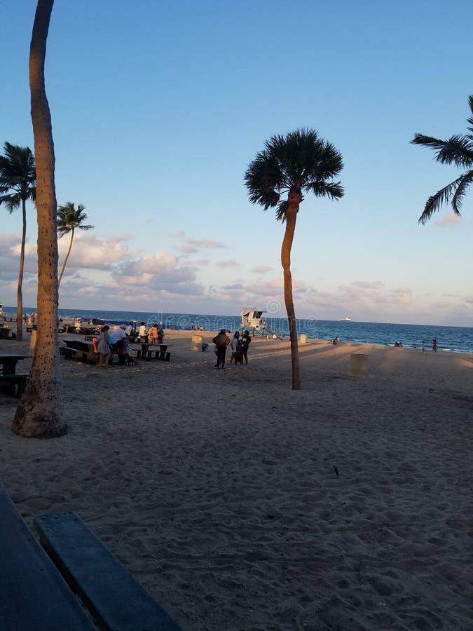 在海滩迈阿密佛罗里达的下午 免版税图库摄影