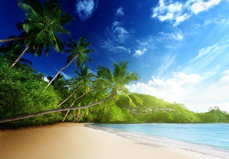 在海滩, Mahe海岛,塞舌尔群岛的日落 免版税图库摄影