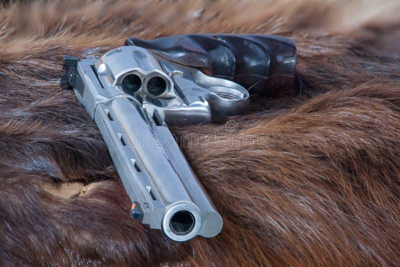 在海狸兽皮的左轮手枪 库存照片