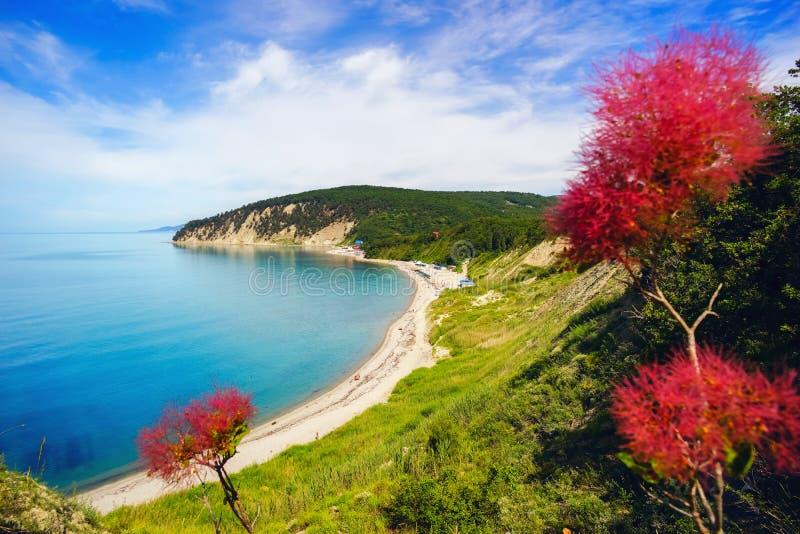 在海的美丽的景色从高度,与花 库存照片