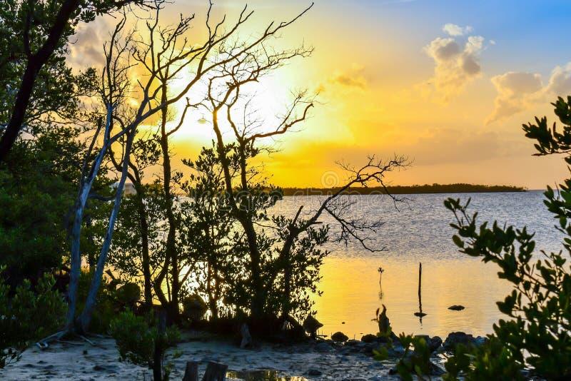 在海的美好的日落有清楚的天空的在基拉戈,佛罗里达 免版税图库摄影