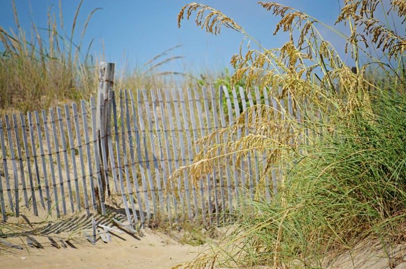 在海草的海滩篱芭 免版税库存照片