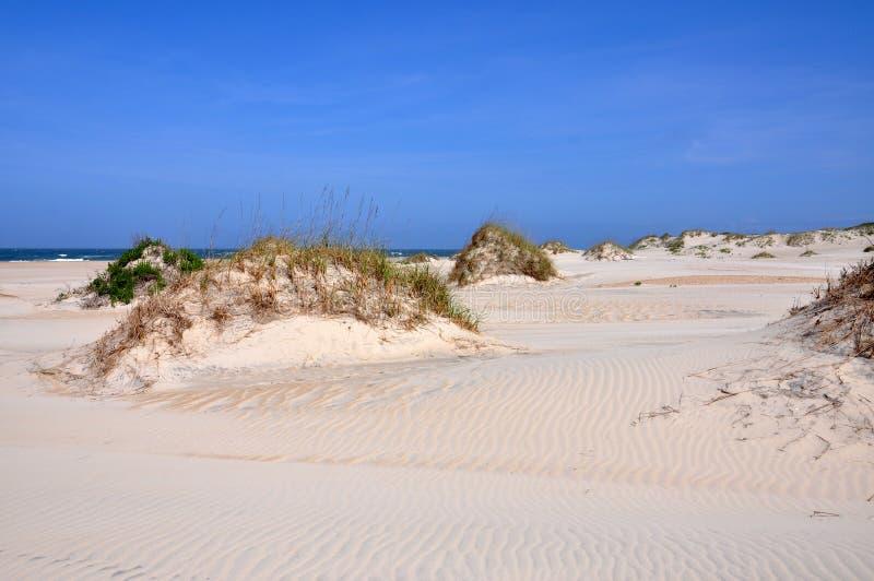 在海角Hatteras,北卡罗来纳的沙丘 免版税图库摄影