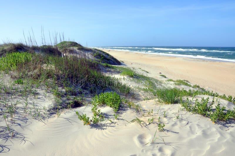 在海角Hatteras,北卡罗来纳的沙丘 免版税库存图片