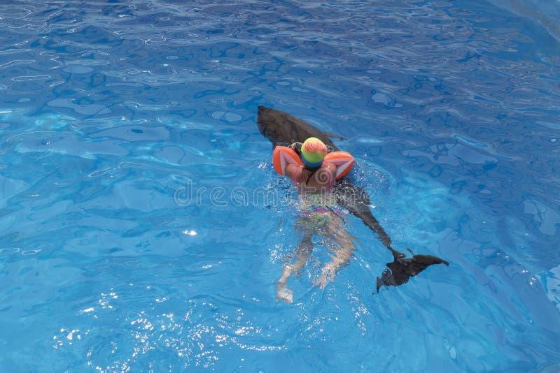 在海豚的小女孩游泳 免版税图库摄影
