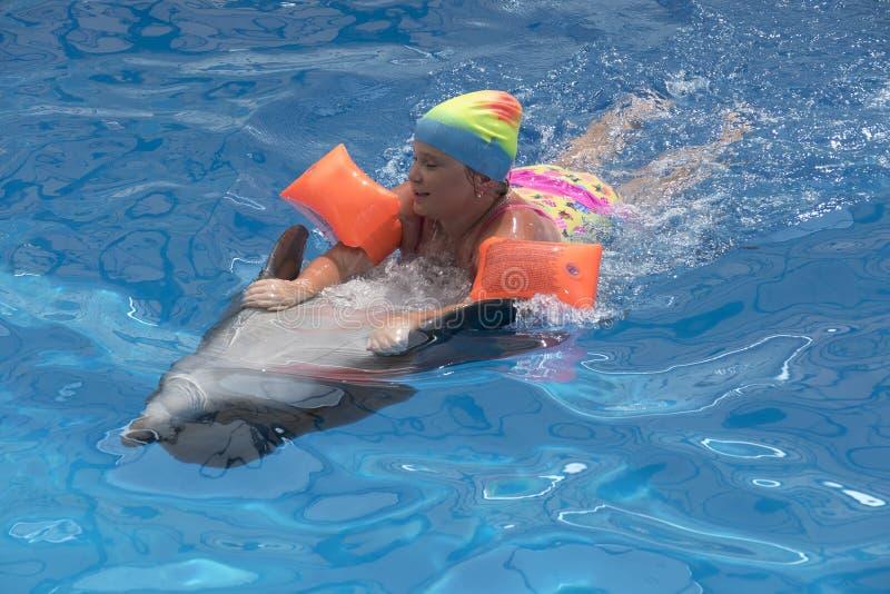在海豚的小女孩游泳 免版税库存图片
