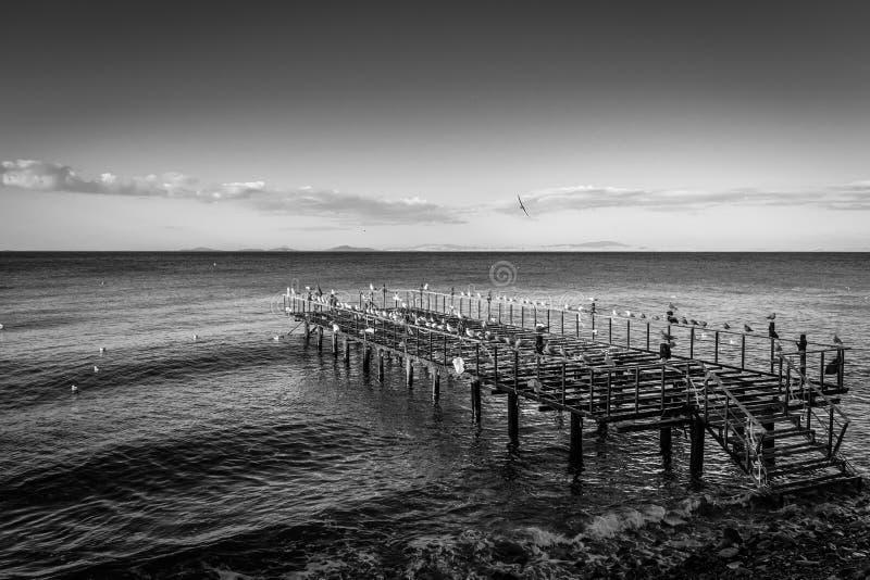 在海边的使荒凉的钢建筑码头 免版税库存图片