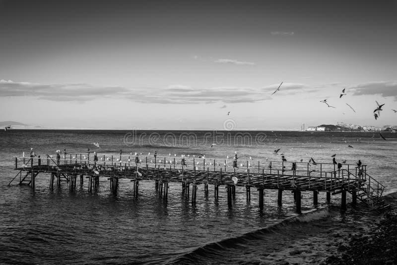 在海边的使荒凉的钢建筑码头 图库摄影