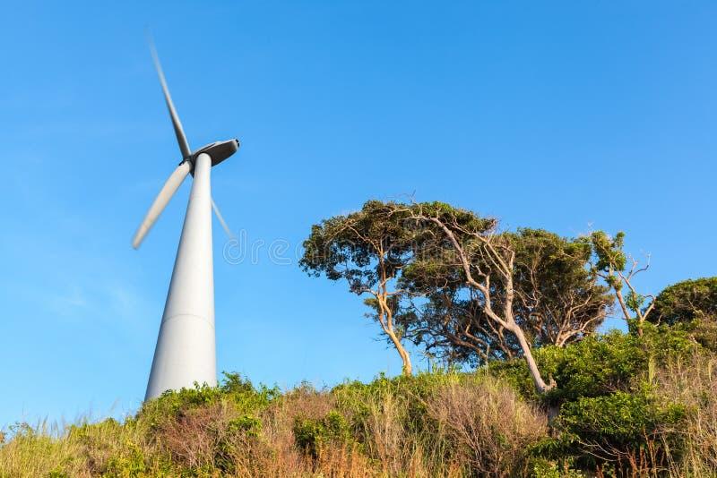 在海边的风轮机 免版税图库摄影