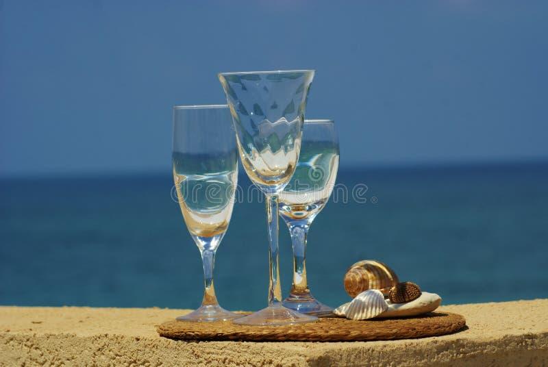 在海运壳酒里面的玻璃 免版税图库摄影