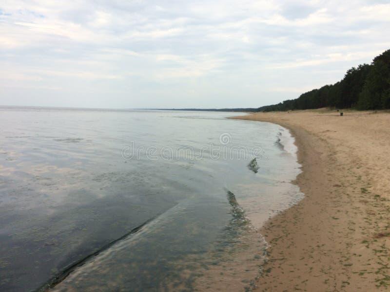 在海运somethere塔林附近的波儿地克的爱沙尼亚 库存照片