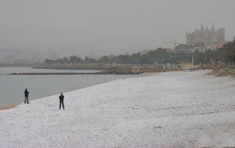 在海附近下雪在马略卡地中海海岛  库存图片