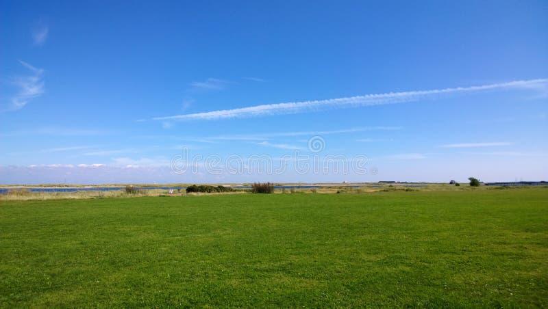 在海附近的绿色草坪在丹麦 免版税库存照片
