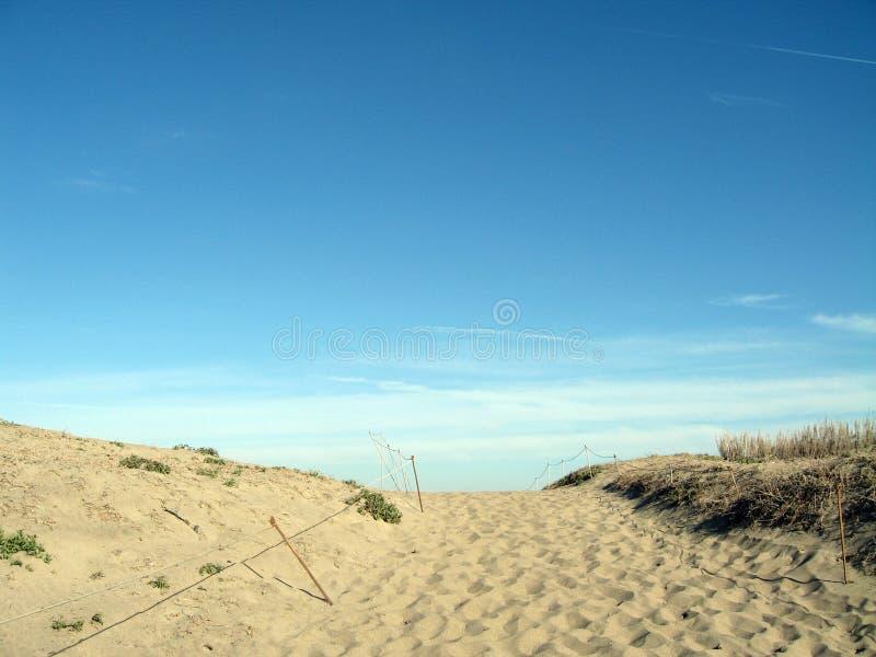 在海滩之外 库存照片