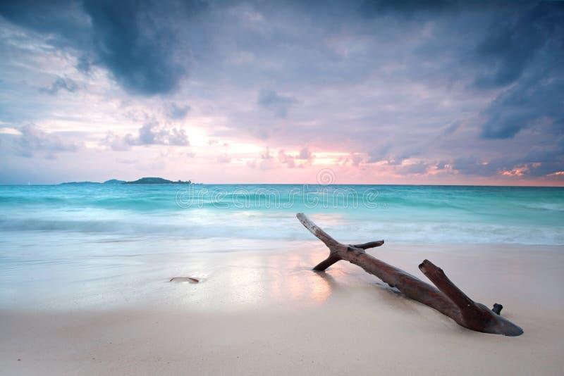 在海滩塞舌尔群岛的日落 免版税库存图片