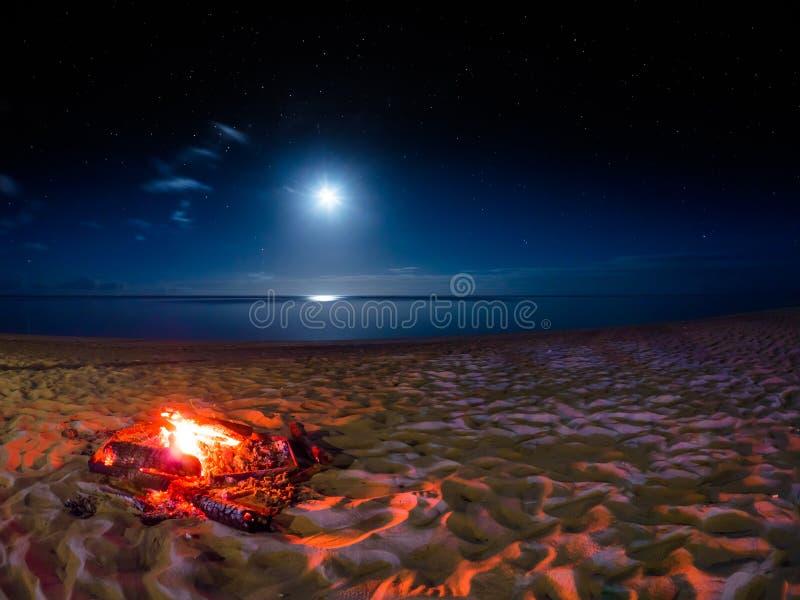 在海滩毛里求斯的月光火 免版税库存图片