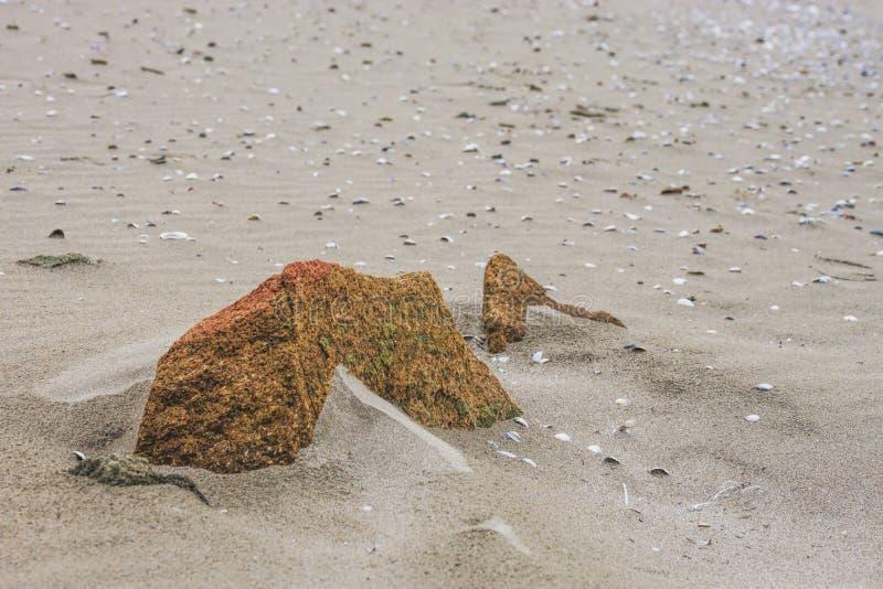 在海滩沙子的一块石头 图库摄影