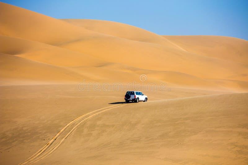 在海洋海岸的沙丘 免版税图库摄影