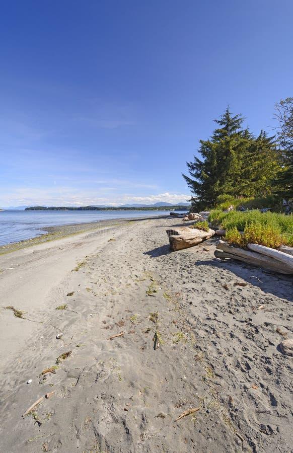 在海洋海岸的遥远的海滩 图库摄影