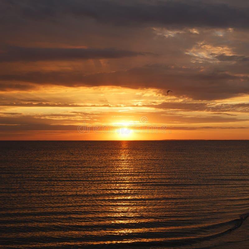 在海滩海波浪夏天热带背景的美好的日落 库存图片