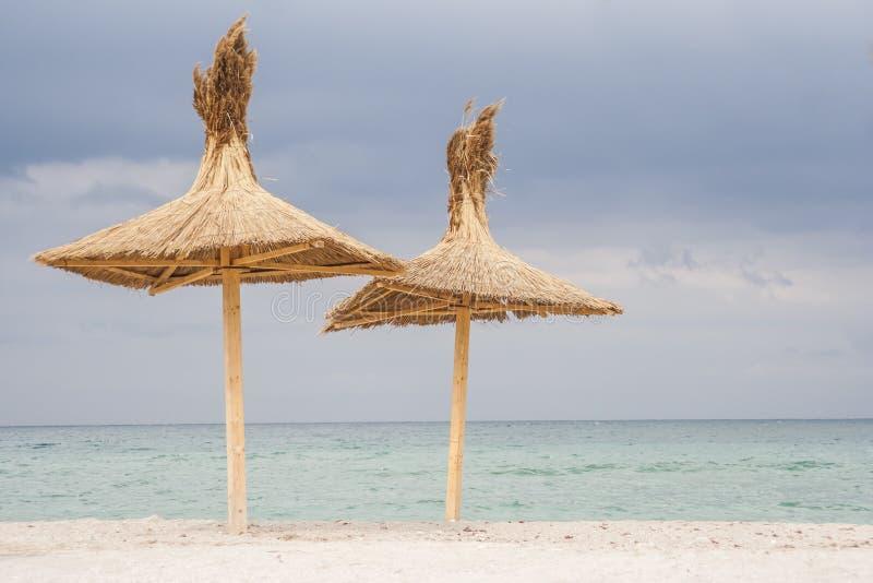 在海滩的两把伞 免版税库存照片