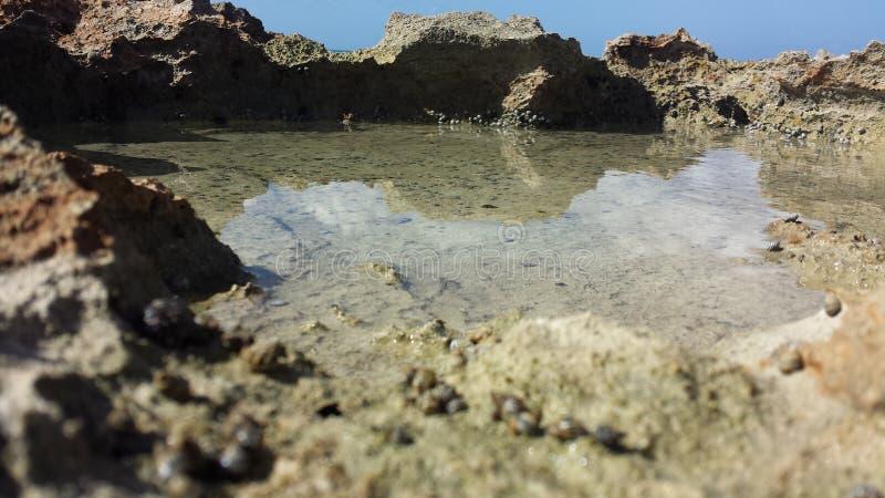 在海滩的好天儿 图库摄影