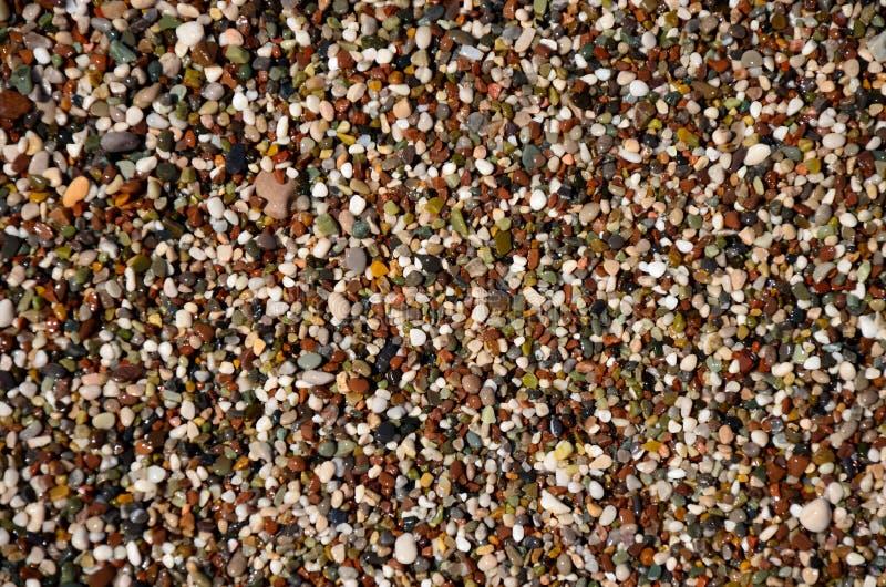 在海滩的小小卵石 免版税图库摄影