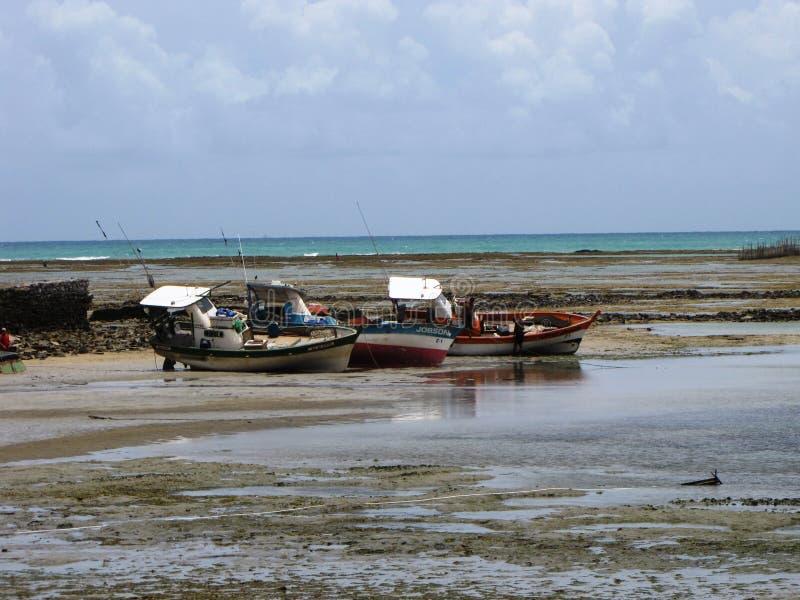 在海滩的小船在马塞约,巴西 库存照片