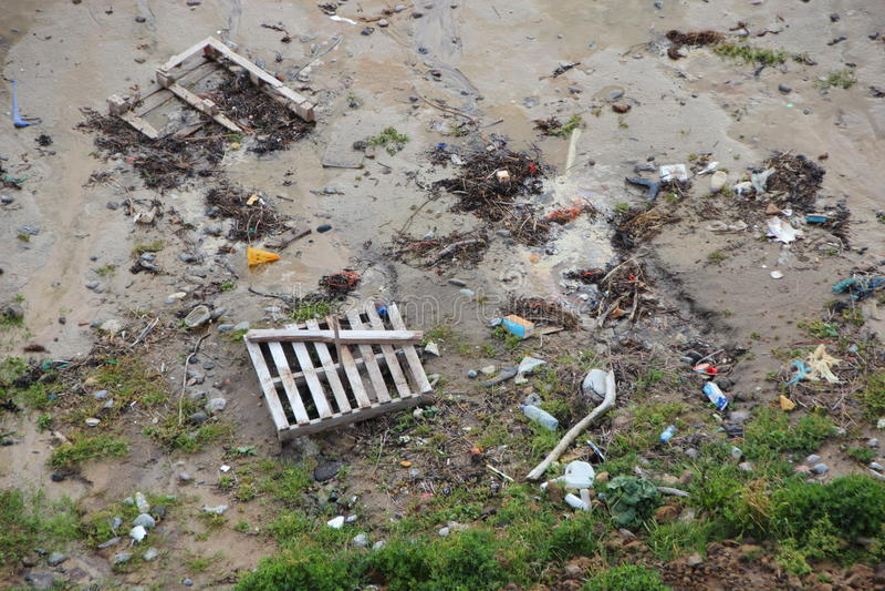 在海滩的搁浅的垃圾在透视的风暴以后 库存图片