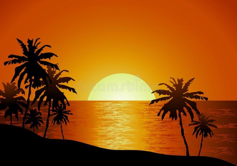 在海滩的日落视图与棕榈树 皇族释放例证