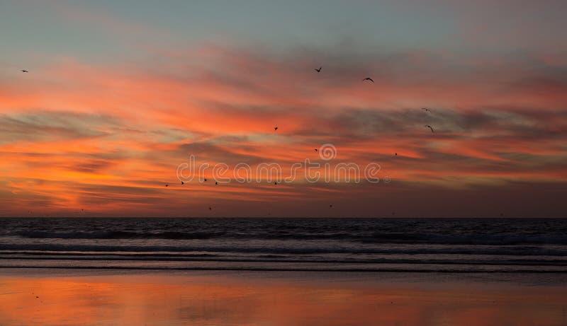 在海滩的日落阿加迪尔在摩洛哥 免版税图库摄影