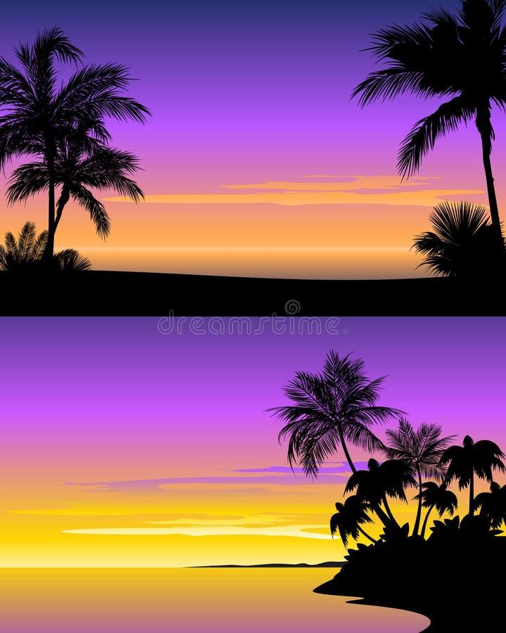 在海滩的日落 库存例证