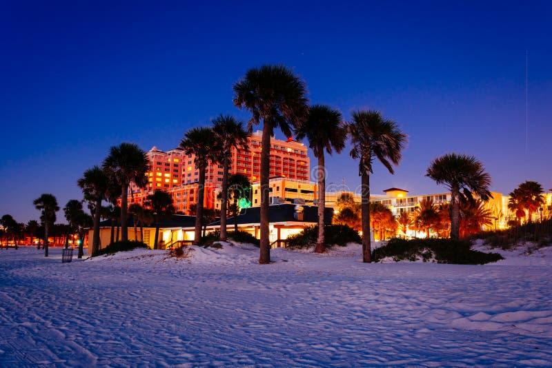 在海滩的棕榈树在晚上在Clearwater靠岸,佛罗里达 免版税库存照片