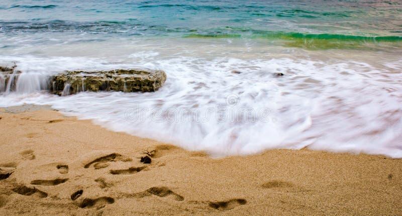 在海滩的波浪在日落 免版税库存图片