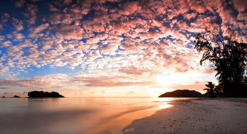 在海滩的热带日出 免版税库存图片