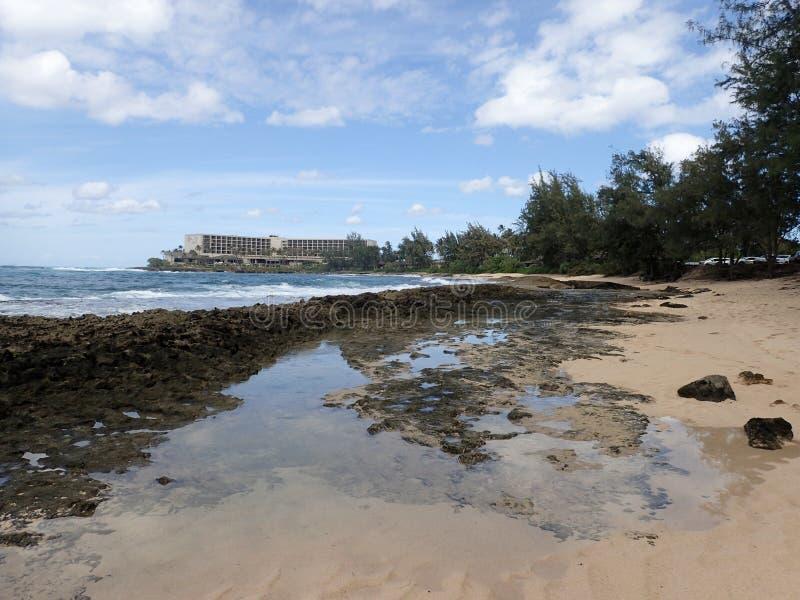 在海滩的熔岩岩石在乌龟海湾 库存照片