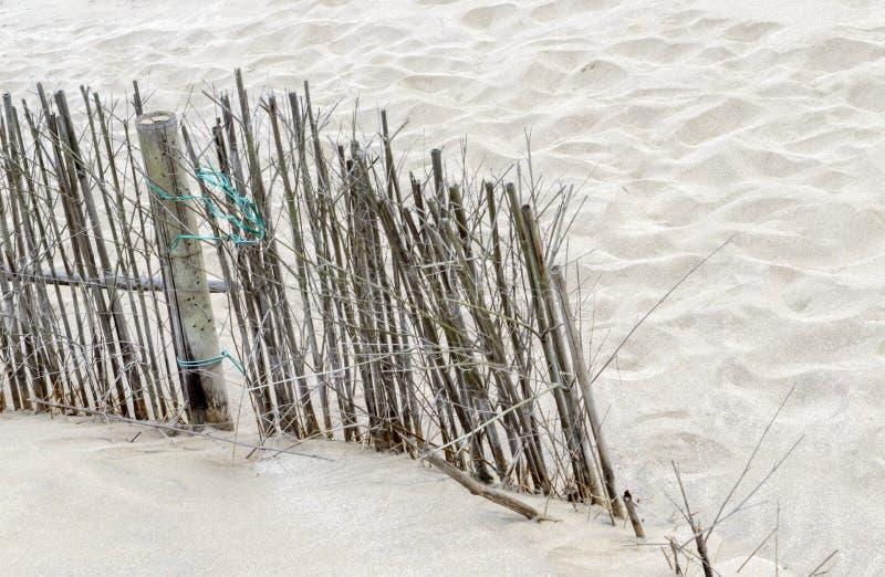 在海滩的竹木栅 库存图片