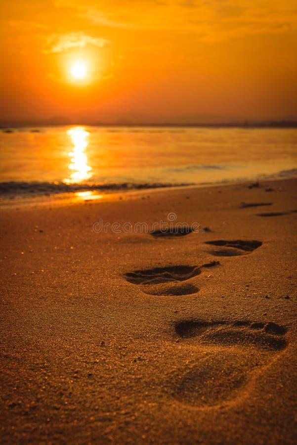 在海滩的脚印在日落 库存图片