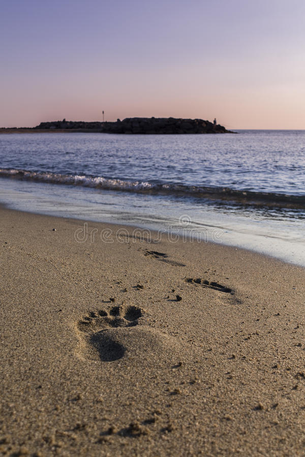 在海滩的脚印 免版税库存图片