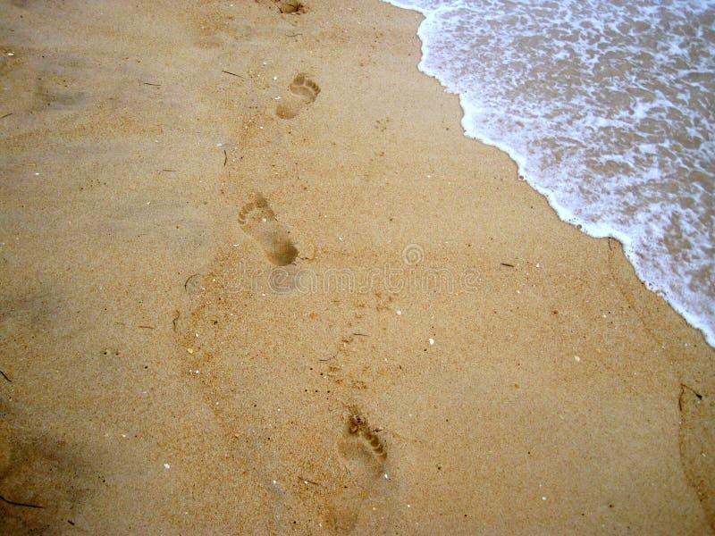 在海滩的跟踪 免版税库存照片