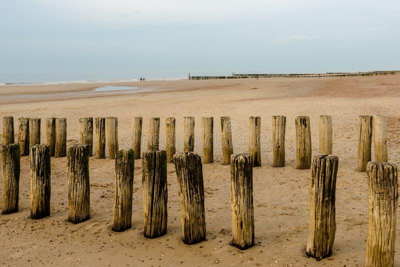 Download 在海滩的防堤在日落 库存图片. 图片 包括有 海洋, 光芒, scape, 本质, 海岸, 云彩, 颜色 - 72369599