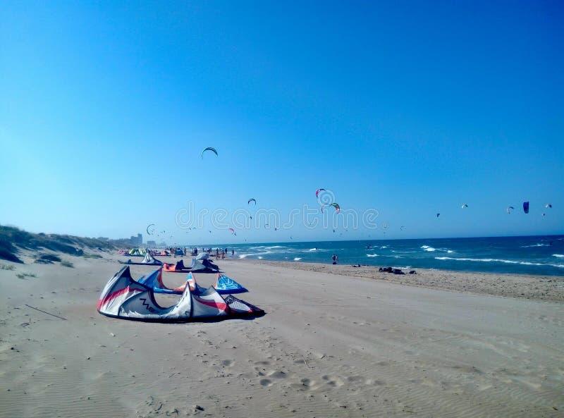 在海滩的风筝 库存图片