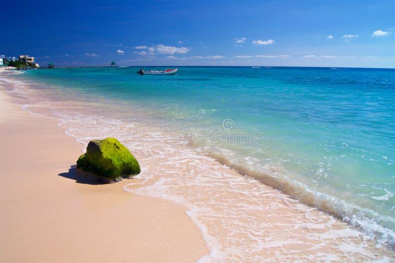 在海滩的CGreen石头在加勒比 免版税库存照片