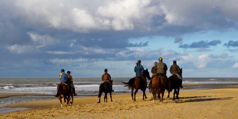 在海滩的Horesback车手 库存照片