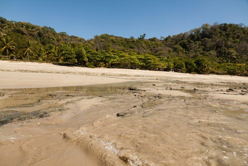 在海滩,哥斯达黎加的日出 免版税库存图片