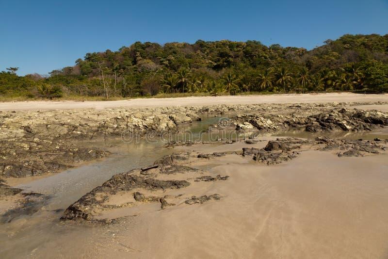 在海滩,哥斯达黎加的日出 免版税图库摄影
