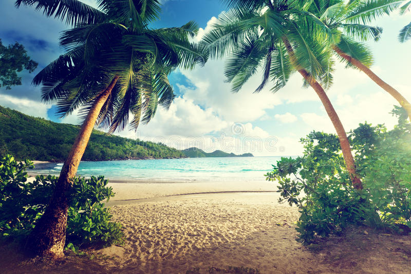 在海滩, Mahe海岛的日落 库存照片